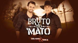 João Pedro & Araujo - Bruto do Mato (CLIPE OFICIAL)