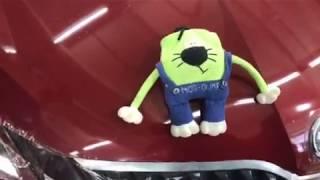 Skoda Octavia защита от сколов. Защитная бронирующая пленка на капот автомобиля