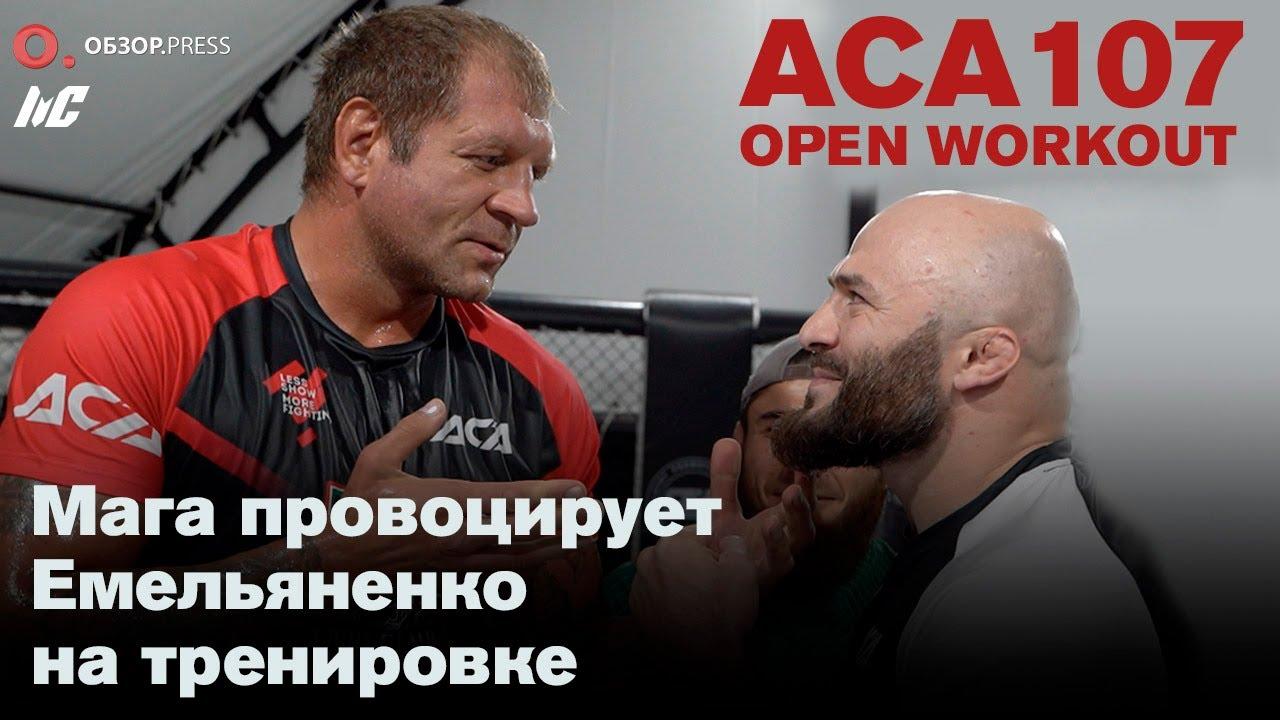 Емельяненко против Исмаилова. Открытая тренировка бойцов.