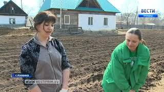 Молодые фермеры из Казанки намерены завоевать арбузный рынок