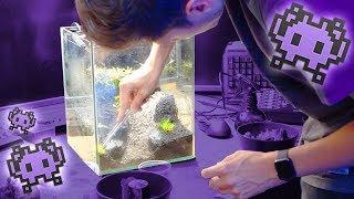 UFO Aquarium bepflanzen!