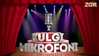 Kulgu mikrofoni 66-soni (17.05.2018)