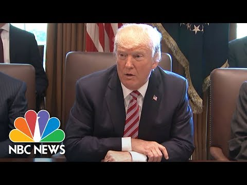 Donald Trump Blames 'Obstructionist' Dems At First Full Cabinet Meeting | NBC News