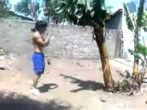 Kicking Banana Tree FULL FORCE With Shin   Muay Thai