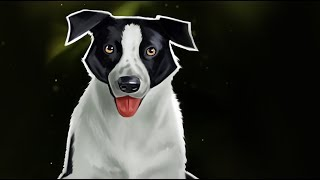 Digital Painting of a Border Collie