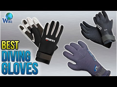 10 Best Diving Gloves 2018