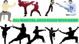 martial arts kicks training in hindi,karate kicks training,kicks techniques