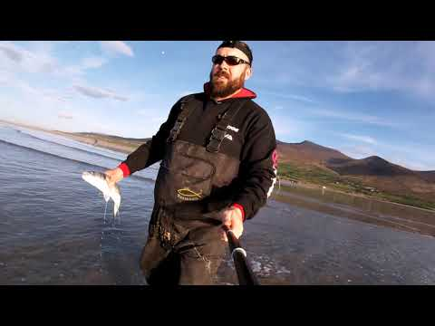 Surf Fishing For Bass In Brandon Bay,  County Kerry, Ireland