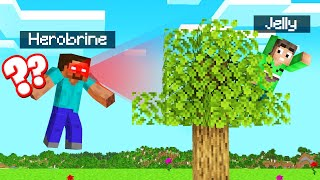 Playing HEROBRINE HIDE And SEEK in MINECRAFT!
