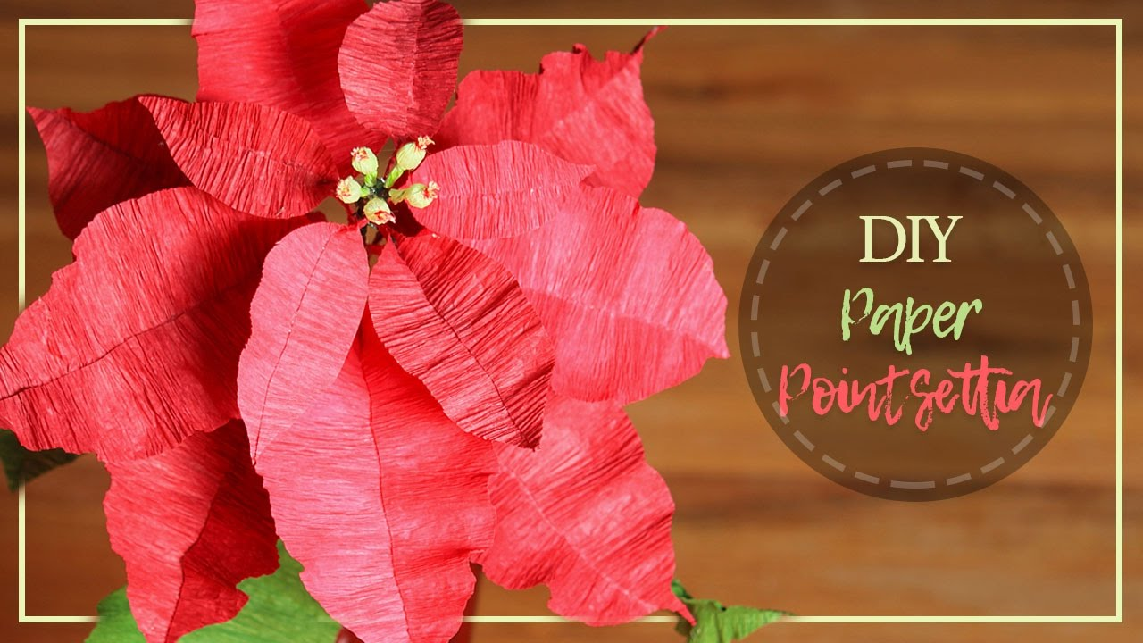 Diy Crepe Paper Pointsettia Flowers