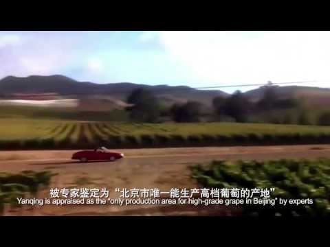 Planning for Yanqing Grape Wine Chateau Industry (English)