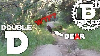 Double D - Auburn SRA - Auburn, Ca - Mountain Biking