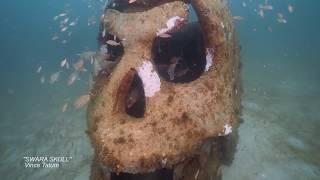 Underwater Museum of Art with Shane Reynolds