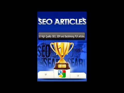 SEO Expert Web Hosting Goodland Domains