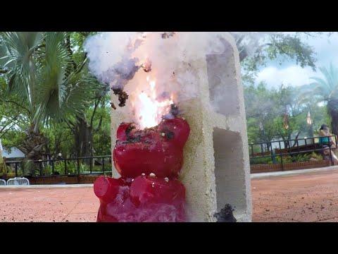Caution! Explosive Gummy Bear! | Street Science