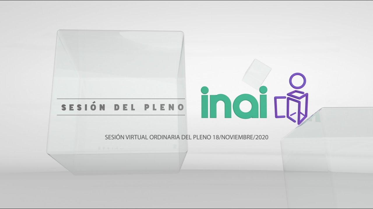 Sesión pública virtual del 18 de noviembre de 2020