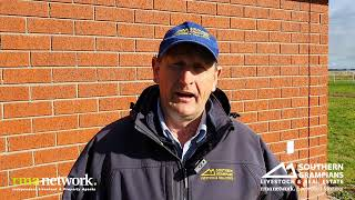 WVLX Mortlake Spring Drop Weaner Sale, Thursday 27th May 2021