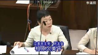 相原 久美子(立憲民主党・民友会) 内閣委員会 参議院 2018 07 03