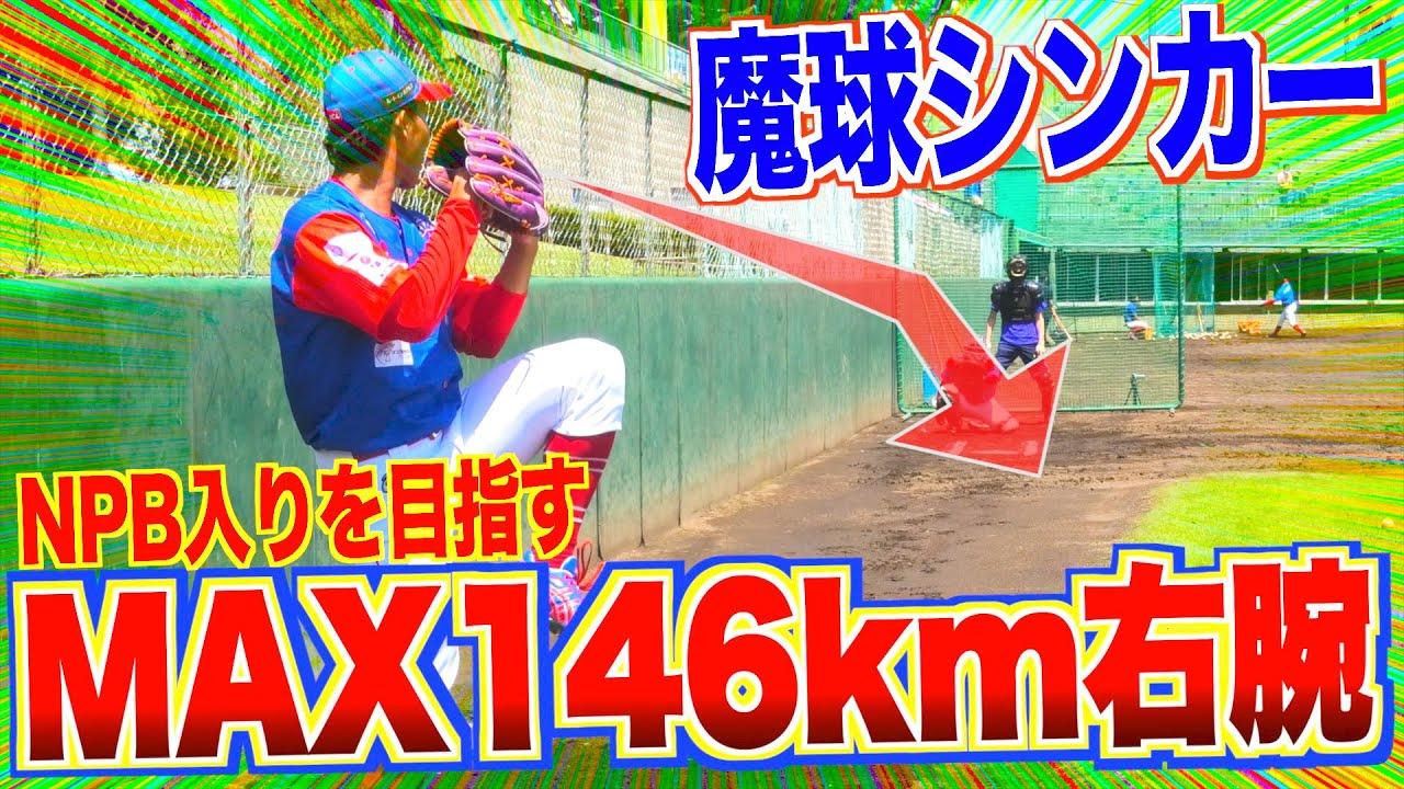 【NPBを目指すMAX146キロ右腕】消えるシンカーがヤバイ!! 埼玉武蔵ヒートベアーズ