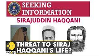 Is the US looking to capture or kill Sirajuddin Haqqani?   Afghanistan   Taliban   Latest World News
