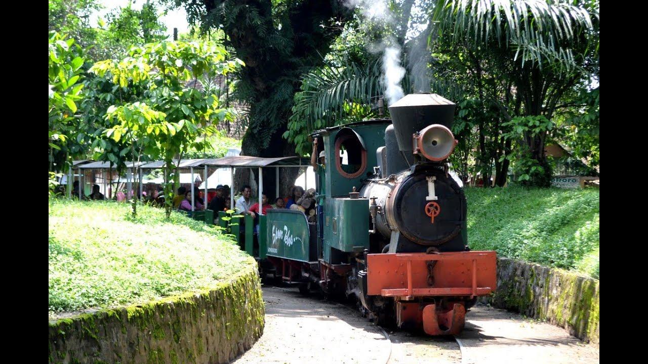 Kereta Uap (Lori) di Agrowisata Sondokoro, Karanganyar