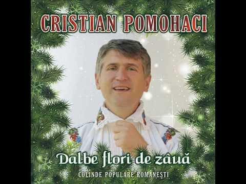 Cristian Pomohaci - Dalbe flori de zaua