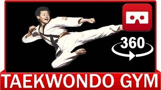 360° VR VIDEO - Best Taekwondo Martial Art - VIRTUAL REALITY 3D