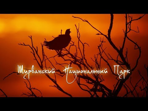 Ширванский национальный парк [English Subs] | Film Studio Aves