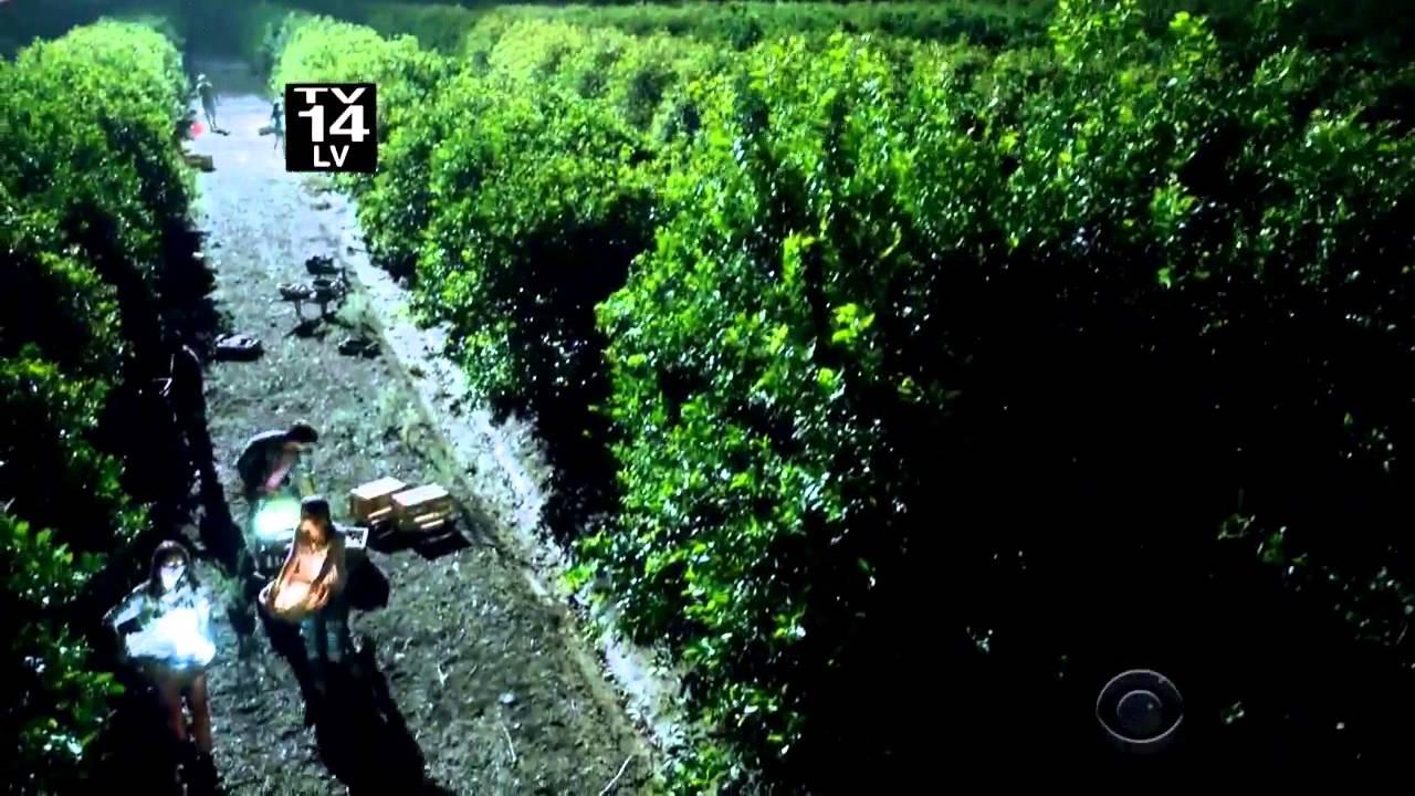 Criminal Minds: Beyond Borders (season 2)