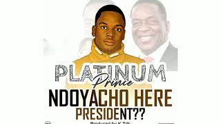 Platinum Prince - Ndoyacho Here President