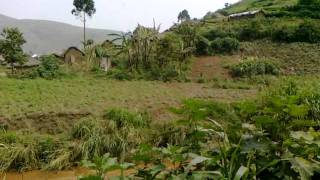 Masisi: Les mauvaises routes affectent le petit commerce