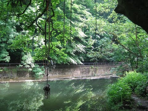 Hidden Rope Swing