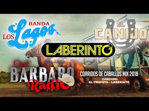 Corridos De Caballos Mix 2018 (Grupo Laberinto, Banda Los Lagos y El Canijo)
