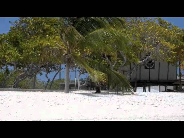 My trip to Los Roques,Venezuela Travel Video