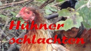 Hühner schlachten - günstige Rupfmaschine selbstgebaut