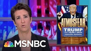 Donald Trump Dog Whistles Heard Clearly By Racists | Rachel Maddow | MSNBC