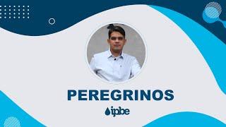PEREGRINOS - Reflexão   Rennan Dias