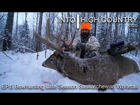 Bowhunting Late Season