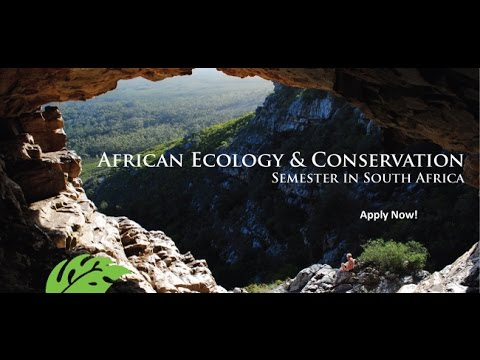 Trop Talk: African Ecology & Conservation in South Africa