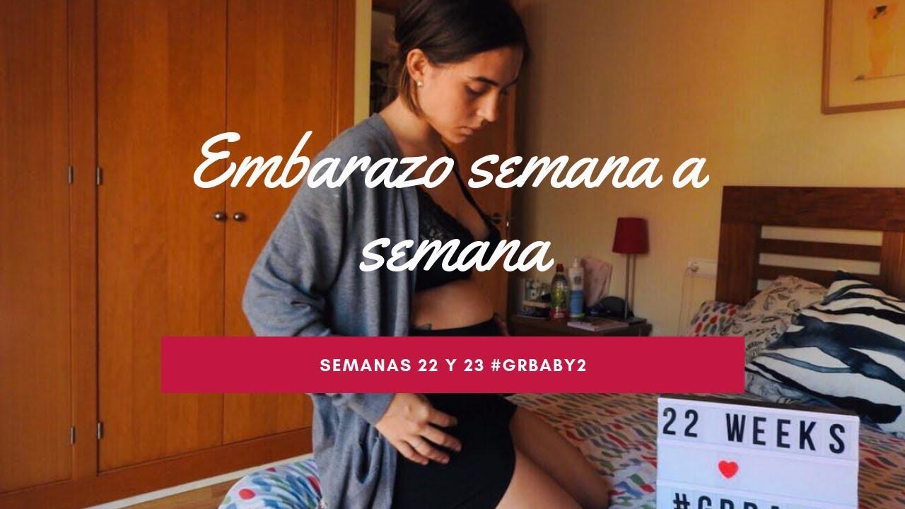 b4385ac24 Embarazo semana a semana    Semanas 22 y 23
