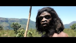 Ape To Man | Theory of Evolution Documentary