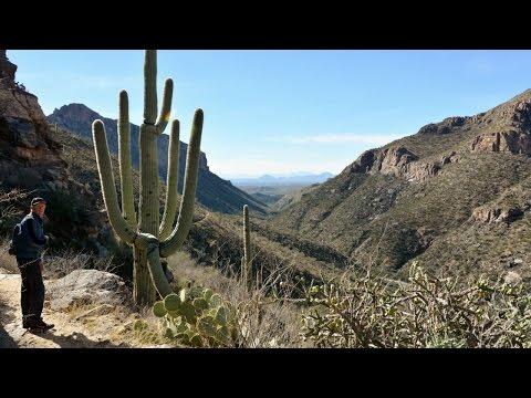 Hikin' Arizona - The Phoneline Trail down Sabino Canyon [Jan. 7, 2017]