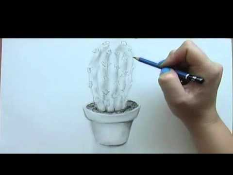 Still-Life Drawing Tutorial: Cactus (easy) - YouTube