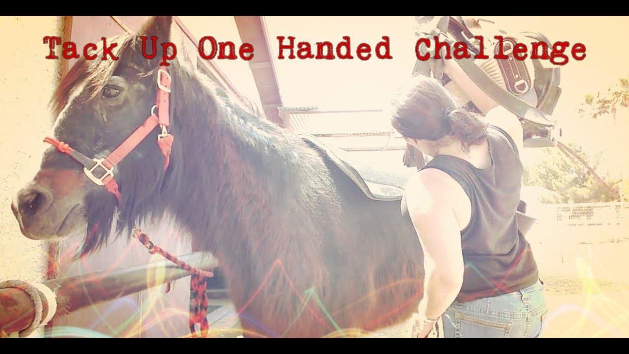 Tack Up One Handed Challenge