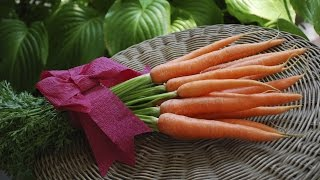 Repeat youtube video Vida Sana con Cecilia: Alimentos orgánicos vs convencionales