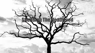 Shedding The Deadwood - Woods Of Ypres (Cover)