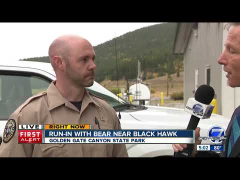 Bear attacks woman in Colorado's Golden Gate Canyon State Park