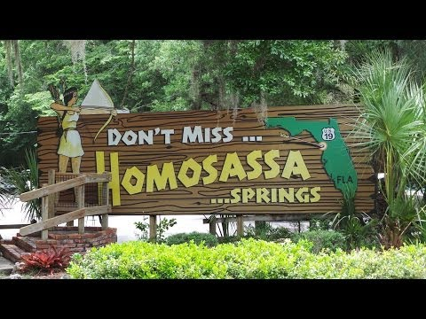 Homosassa Springs Florida State Parks - The Full Boat Jungle Cruise to the Entrance HD 360