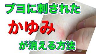 ブヨに刺された時のかゆみが劇的に治まる方法