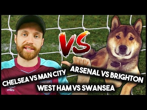 Man vs dog! predicting football results!